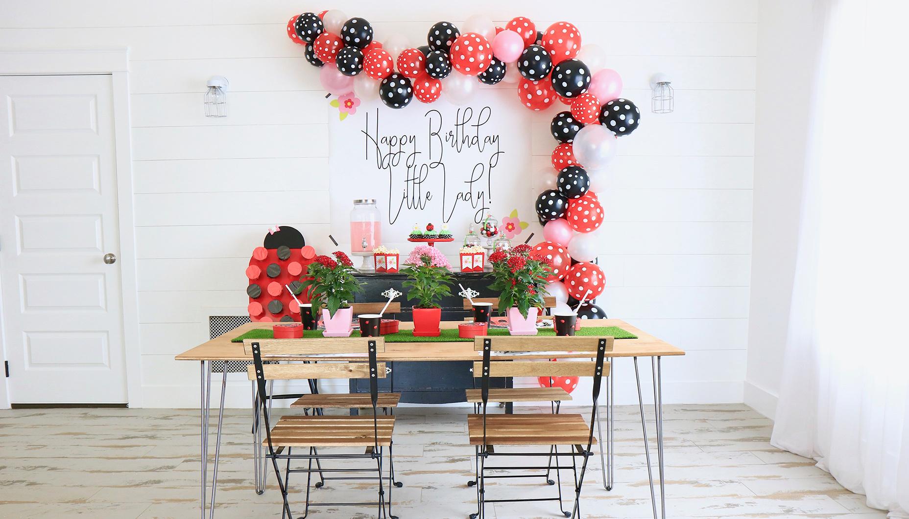 Little Ladybug First Birthday Party Fun365