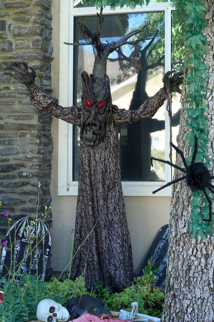 32+ Scary Halloween Front Yards
