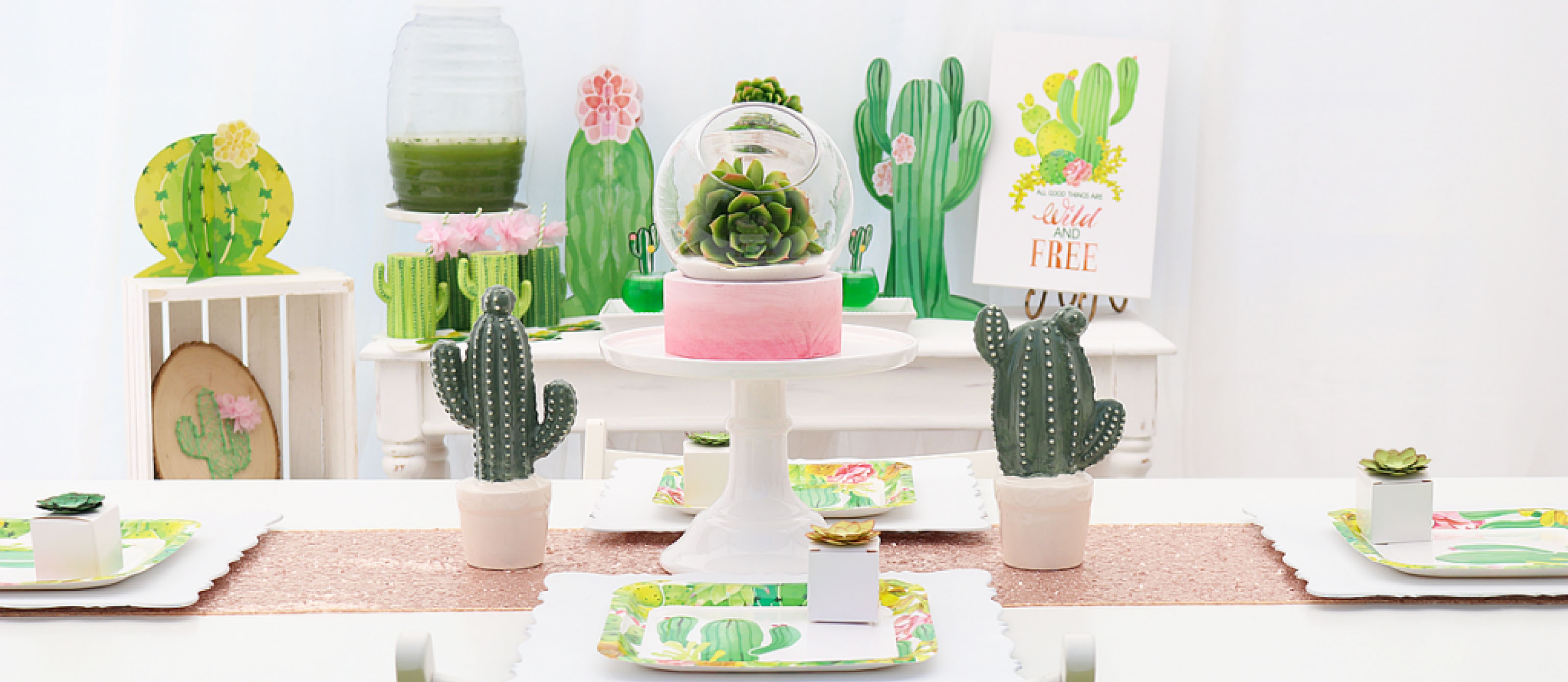 Cactus Party Decor Fun365