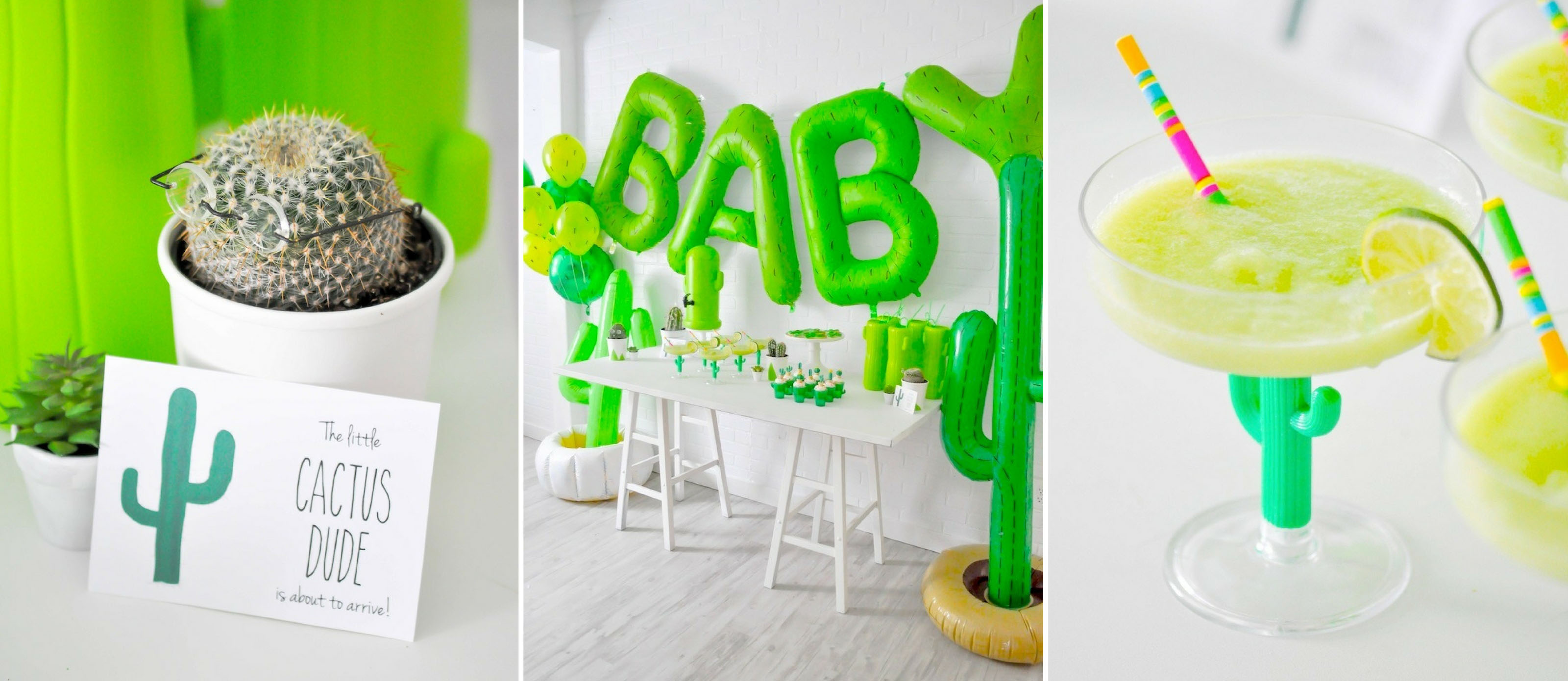 Cactus Themed Baby Shower Fun365