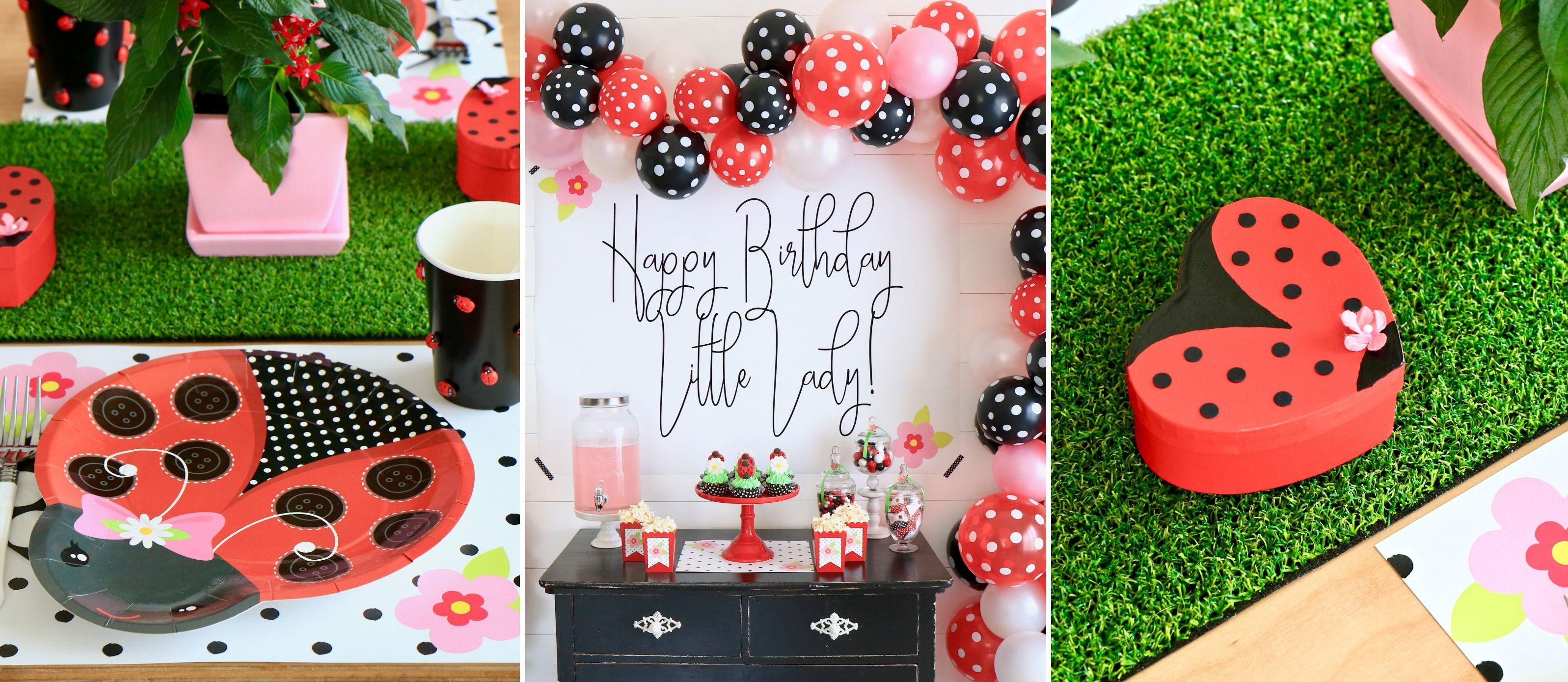 Phenomenal Little Ladybug First Birthday Party Fun365 Personalised Birthday Cards Sponlily Jamesorg