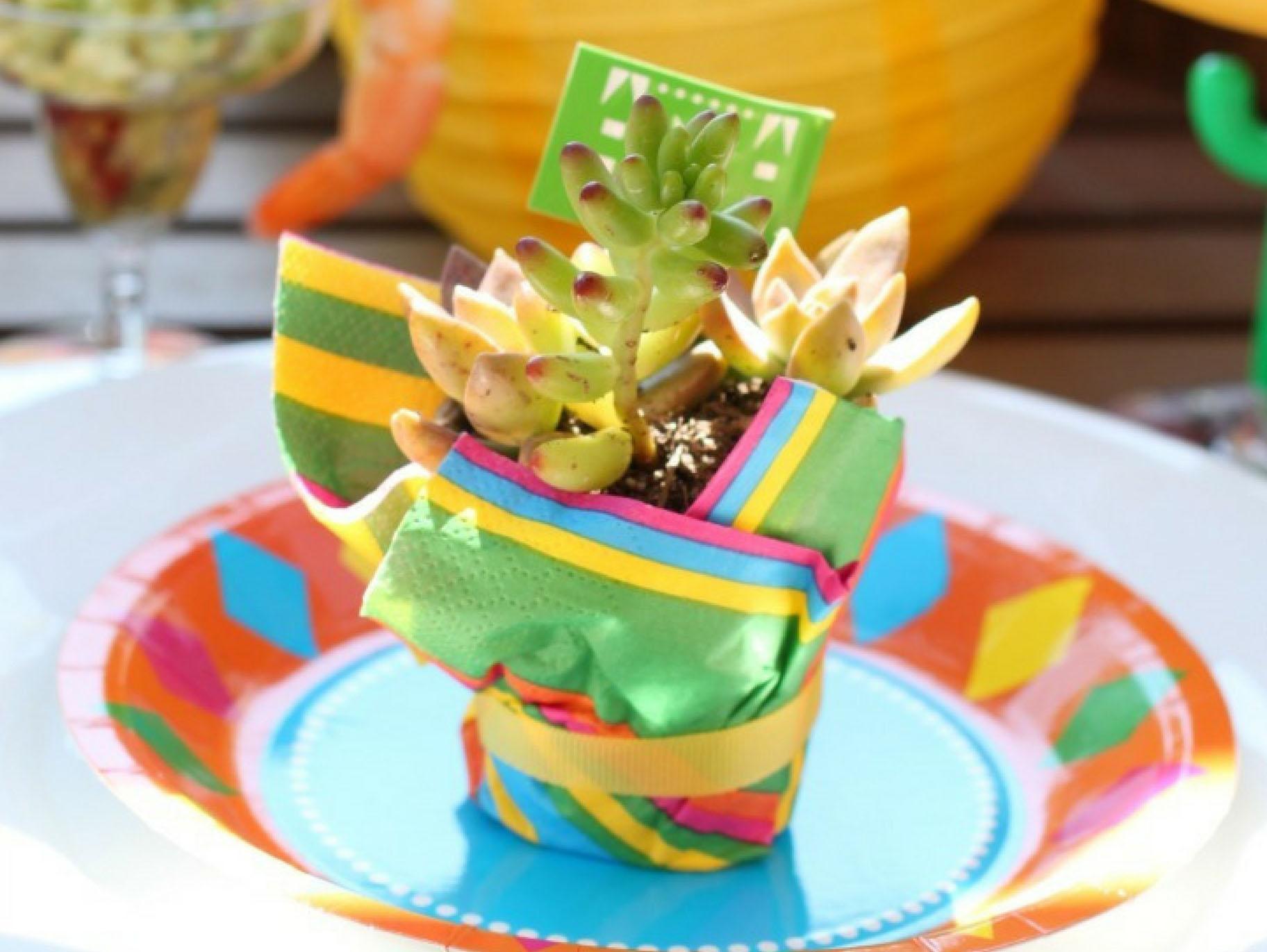 Fiesta Succulent Party Favors Fun365
